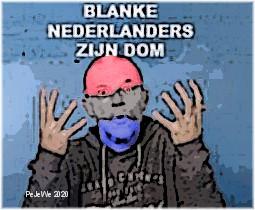 Blanke Nederlanders zijn dom